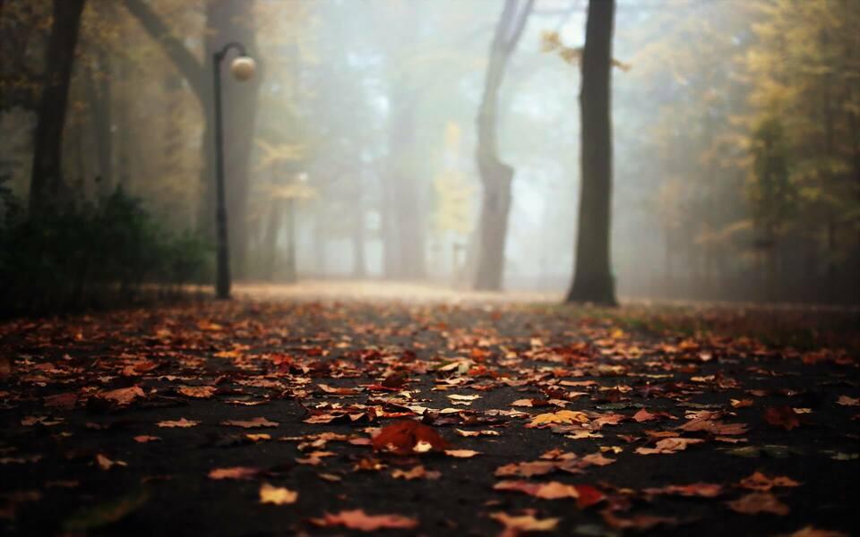 Осенняя депрессия: диагностика, советы психолога и лечение